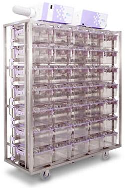 멸균 세척 시스템 Product 주 코사 바이오 Kosa Bio Inc